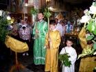 От Пасхи до Троицы (рис.9)