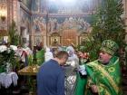 Троицкая родительская суббота и День Святой Троицы в 2020 году в нашем храме (рис.6)